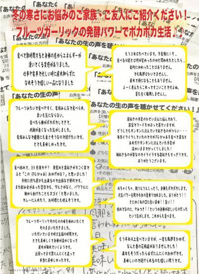 お客様の声チラシ2018.03.pdf